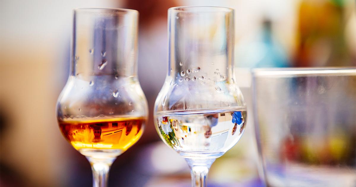 A Palazzo Ottolenghi hanno inizio le degustazioni delle grappe piemontesi.